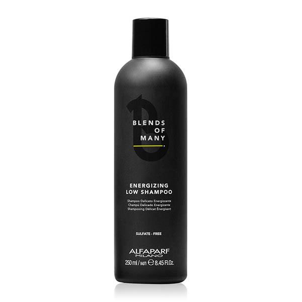 Шампунь мужской деликатный энергетический Alfaparf Blends Of Many Energizing Low Shampoo 250 мл 18566