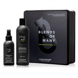 Набор Alfaparf Blends Of Many 20202